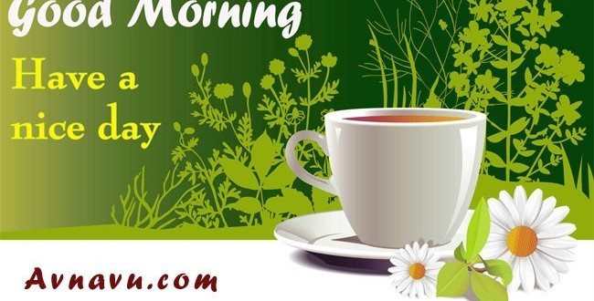 Sweet Good morning Wishes Message SMS Shayari in English