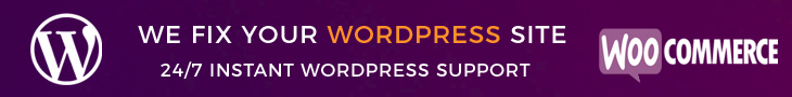 Wordpress Support by experience Developer
